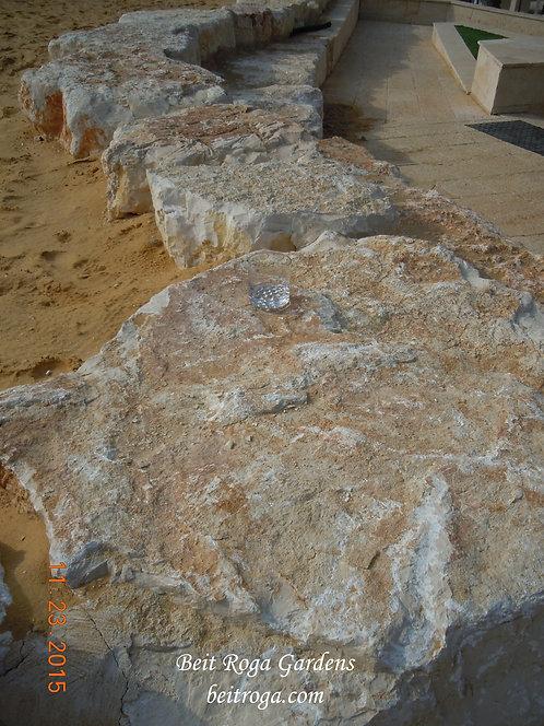 Dead Sea Rejuvenation 3 - Rock