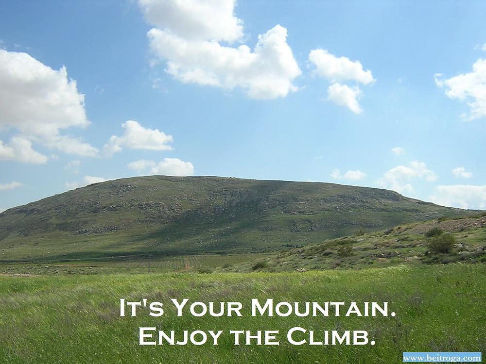 It's Your Mountain, Enjoy the Climb.jpg