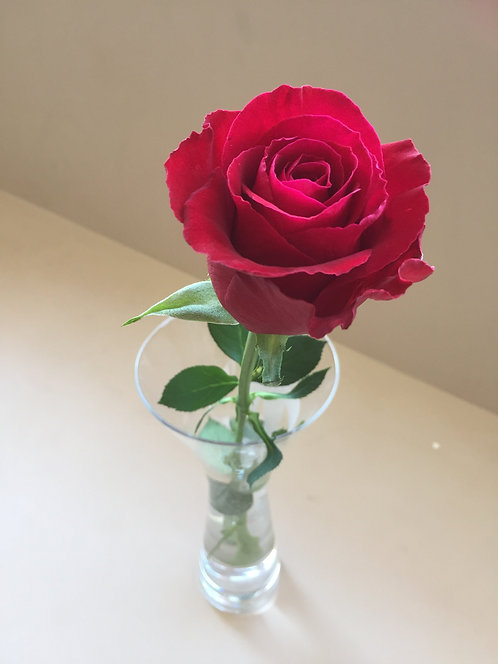 Red Rose (Accept Love)