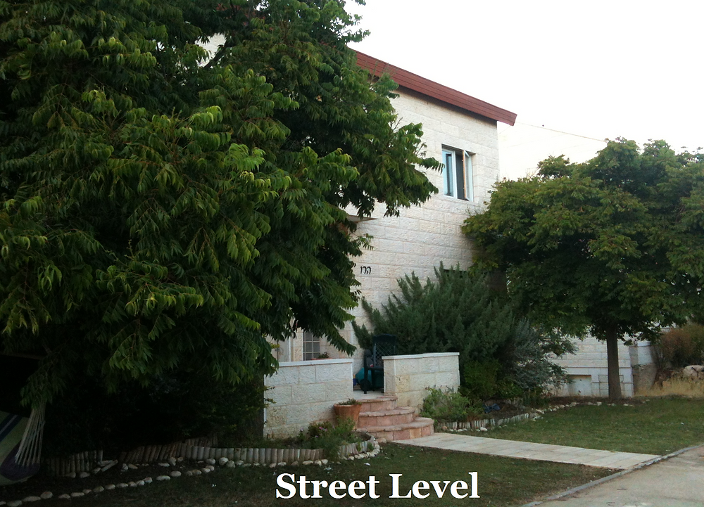 Street Level 1.png