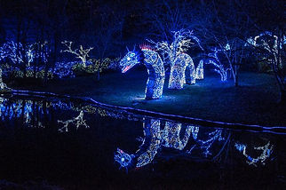 120117_best_christmas_lights_slide_4_fs.