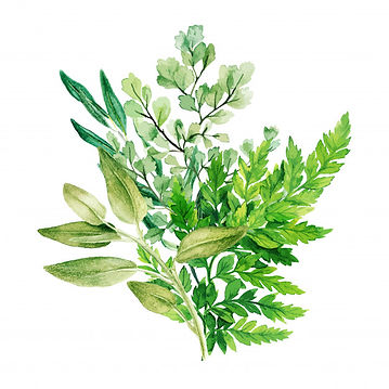 greenery-decorative-bouquet-composed-of-