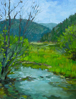 Little Prickly Pear Creek
