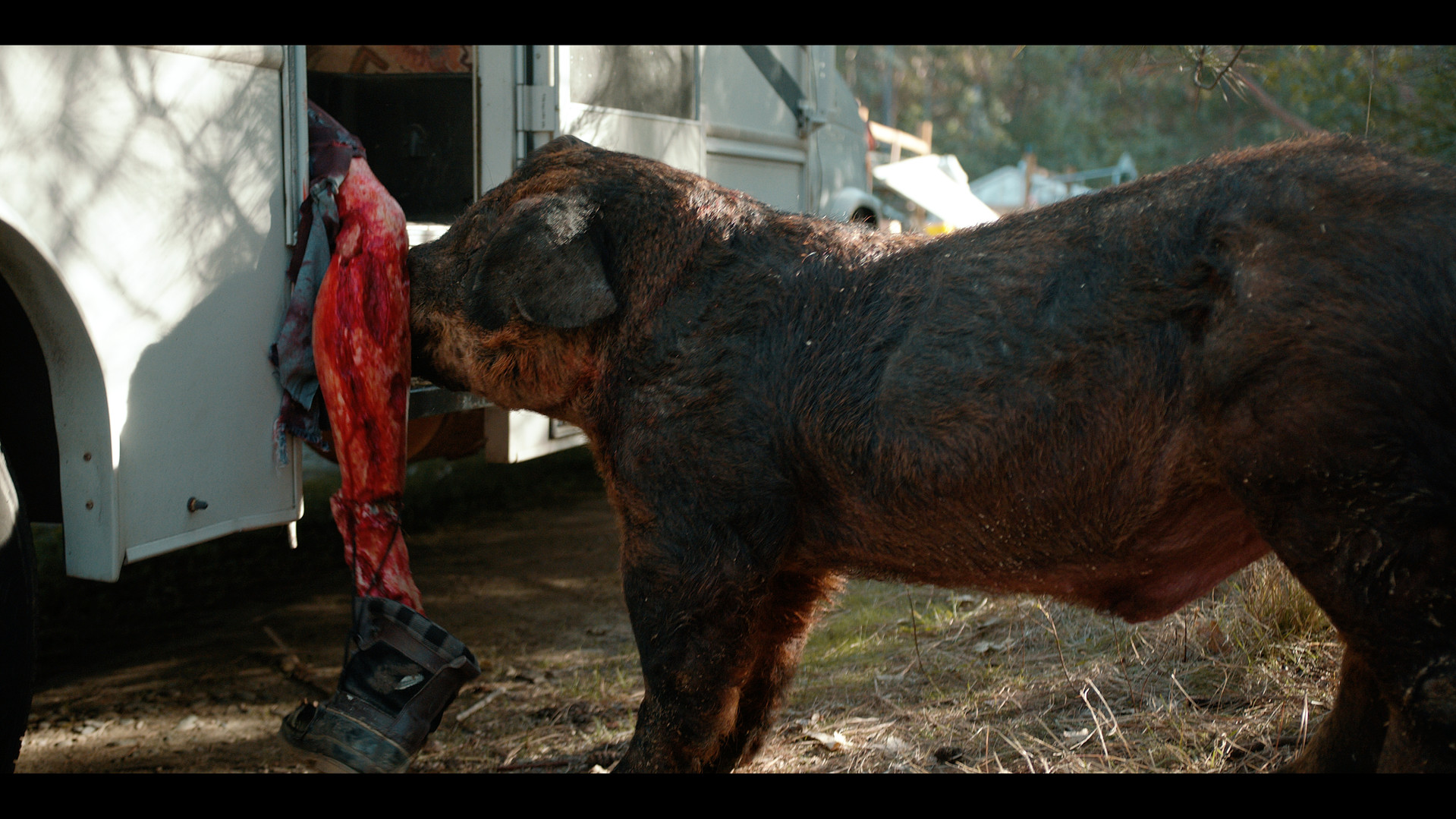 """Still From The Film """"Pig Lady"""""""