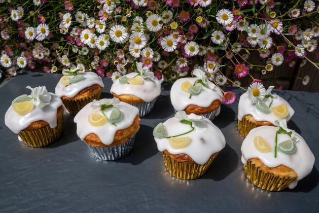 Kates Kakes Citrus Cupcakes