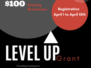 Level Up Grant Registration