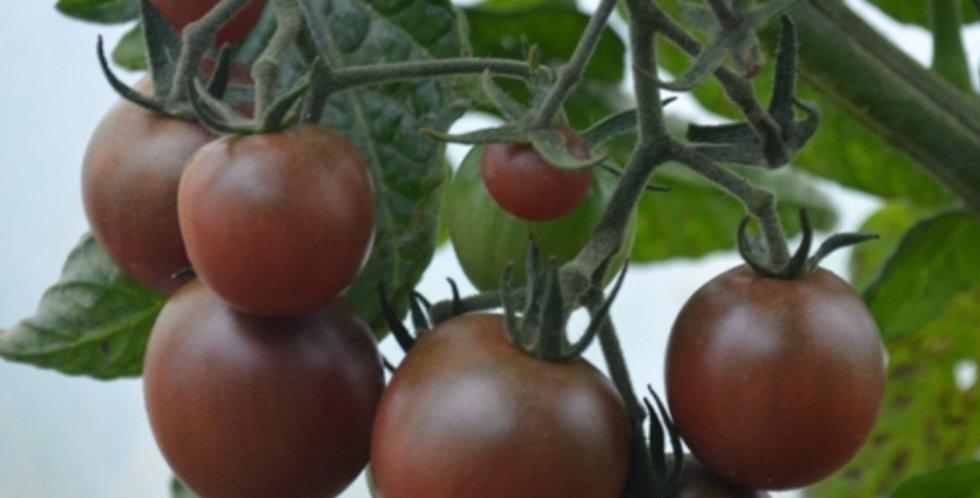 Black Cherry Tomato, Indeterminate, 15 seeds