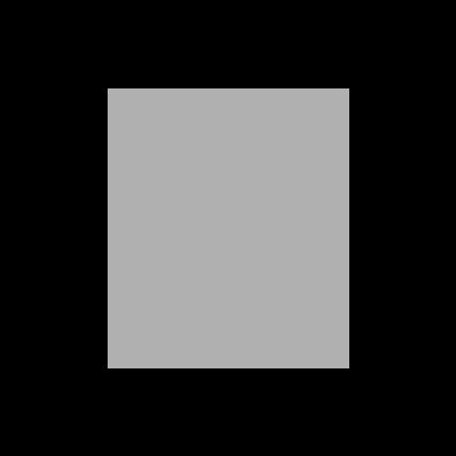 BW DaVinyl