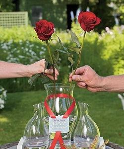 smaller roses.jpg