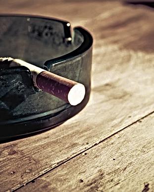 Fumeur Cendrier Aloe Vera Passion