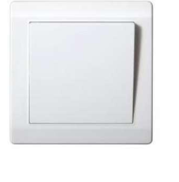 Interior Light Switch