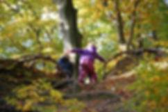 enfants_forêt-1357850_1920.jpg