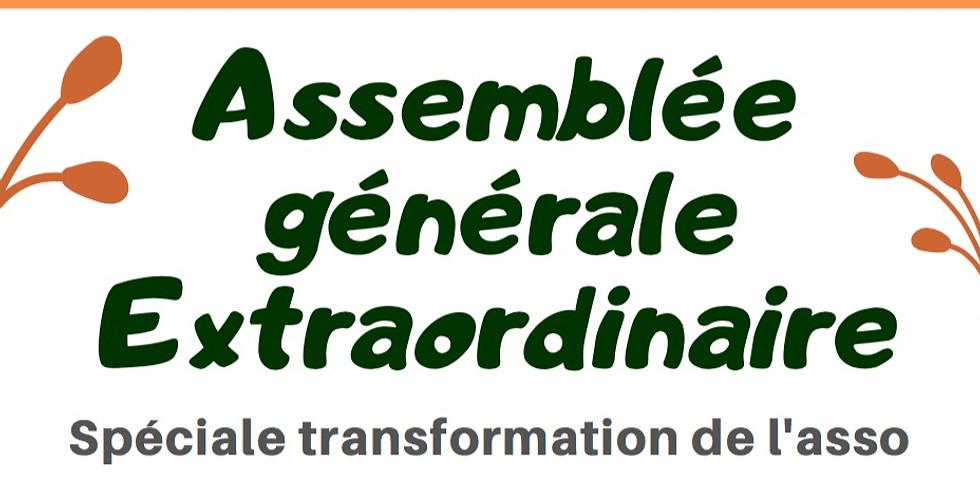 Assemblée Générale Extraordinaire #2 : Création de la SCIC