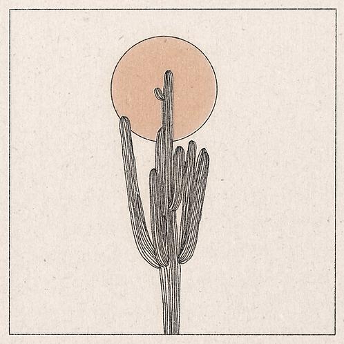 Art print 'Lone Cactus'