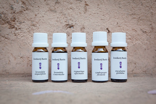 "【kwekerij Bastin】pure essential oil ""rosemary"" / ローズマリー 15ml"