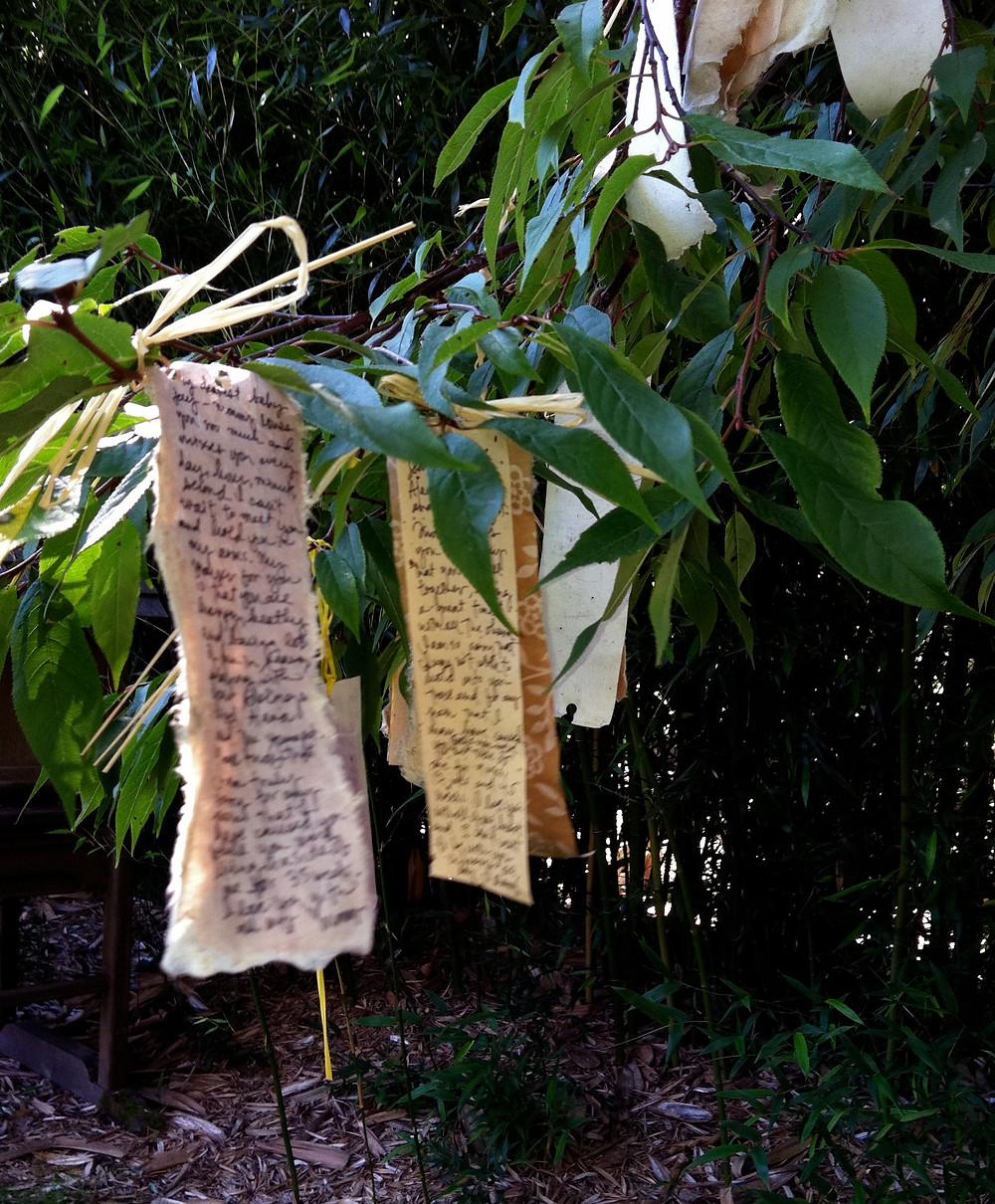 Prayers tied to a tree