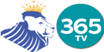 KING_365 PNG.png