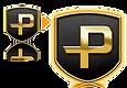 6_transfer platform.png