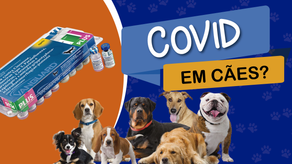Vacina de Coronavírus pra cachorro? Saiba o que é verdade e mito!