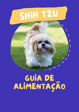 GUIA DE ALIMENTAÇÃO.png