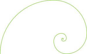 fibonacci-spiral-olive-md.png