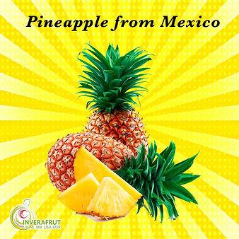 Pineapples from Veracruz
