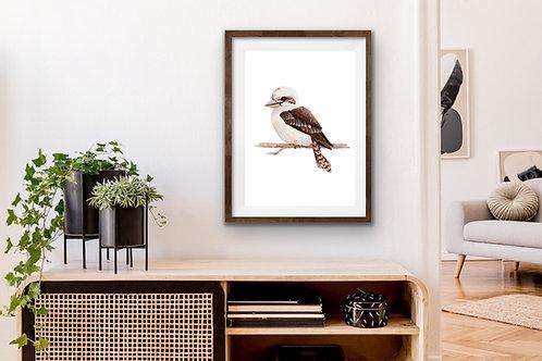 Giclee Print - Kookaburra