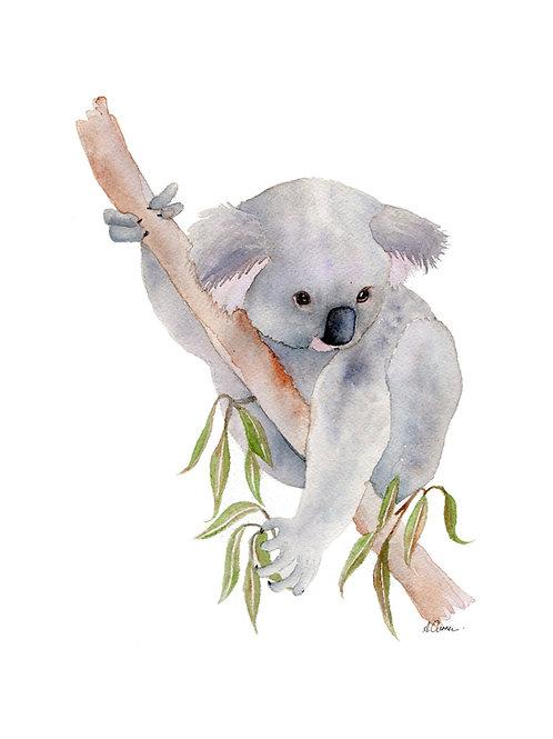 Original - Australian Koala