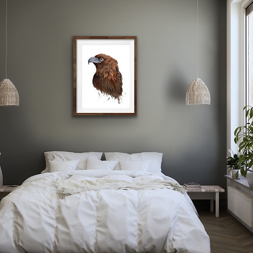 Giclee Print - Wedge Tail Eagle