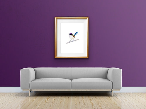 Giclee Print - Purple-crowned Fairy Wren