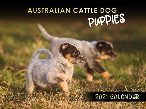 2021 Calendar - Australian Cattle Dog Puppies
