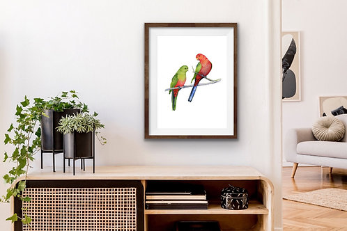 Giclee Print - Pair of King Parrots