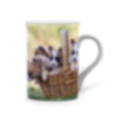 Mug_China_Puppies.png