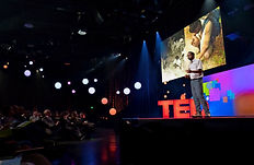 TED2019 Talk by Ashwin Naidu