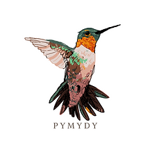 pymydy (2).png