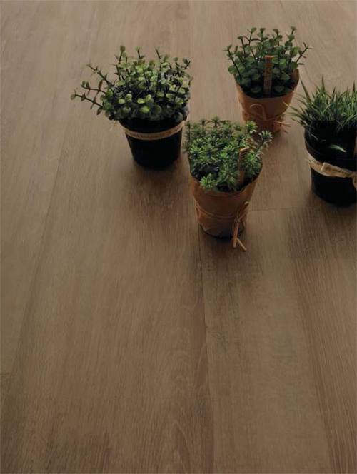 Neutral Wood - Limed Oak Golden