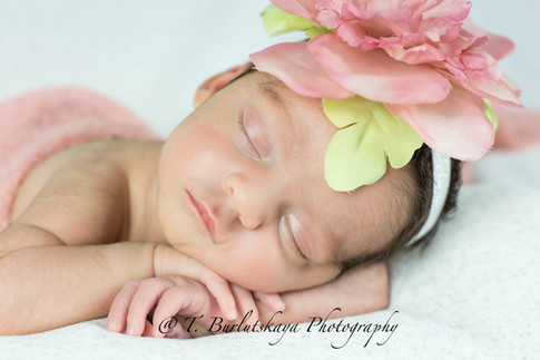 Newborn photographer Stamford CT
