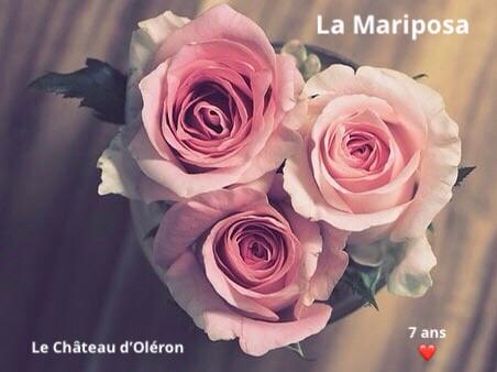 7 ans 🎂 à vos côtés 💖-La Mariposa- Oléron