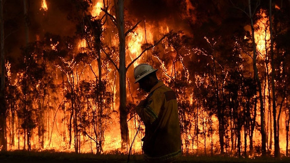 What is causing the Australian Bushfires Worldwide Breaking News