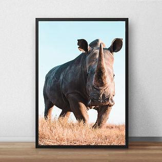 rhinoprint.jpg