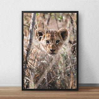 lion3print.jpg