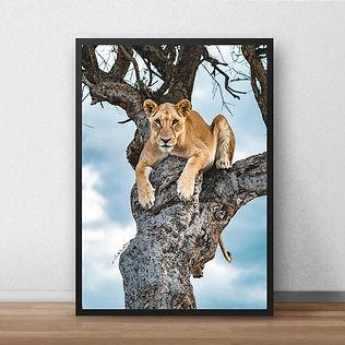lion2print.jpg