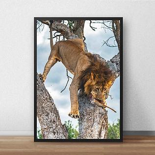 lionprint1.jpg