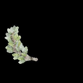 Logo La Dolce Vita.png