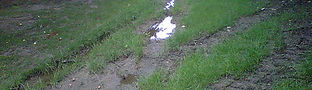 water drainage in back yard