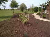 Landscaping with plants, mulch and hydroseeding
