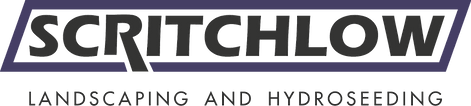 scritch_logo_large no background.png