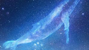 【光配信】女神の断捨離ISM~新生地球との共振~