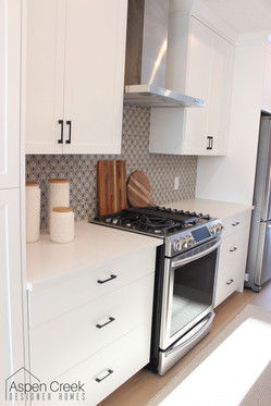 Bold patterned cement tile for this home's kitchen backsplash.