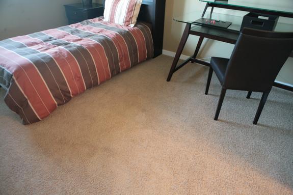 Bedroomcarpet.JPG